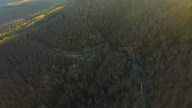 vídeos y material grabado en eventos de stock de aerial footage recorded with drone flying in the montseny nature reserve of catalonia region with car driving thought a beautiful beech trees forest during autumn season. - soleado