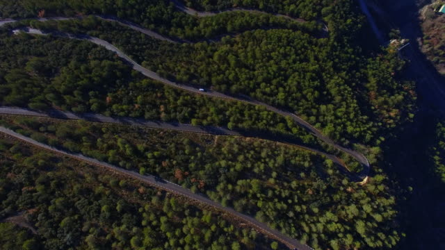 Aerial footage recorded with drone flying over a stunning mountain road in the Catalan Pyrenees with a lot of curves between the pine forest during travel vacations in Pyrenees.