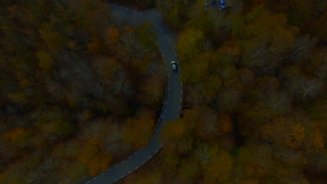 aerial footage recorded with drone flying over mountain road in the stunning forest with autumn colors in the montseny mountain a beautiful huge land covered with trees and high mountains close to barcelona city. - yellow stock videos & royalty-free footage