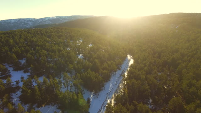 Aerial footage recorded with drone flying over the beautiful Pyrenees mountains in winter season with snow and beautiful pine tree forest during sunset light. 4K UHD.