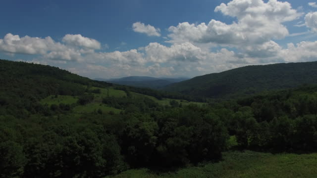 4K aerial footage rising above the trees in the Catskills, in upstate New York. 3840 X 2160. Sunny day.