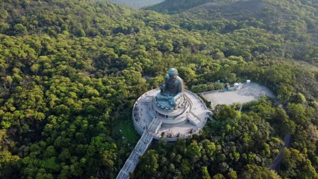 aerial: forest of trees with tian tan buddha statue - tian tan buddha stock videos and b-roll footage