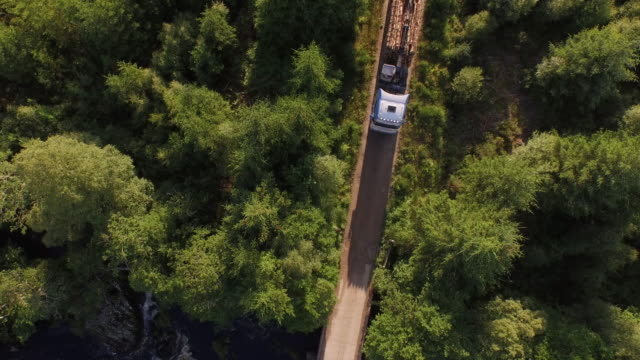 aerial forestry trucks in action - haulage stock videos & royalty-free footage