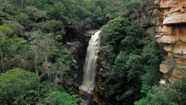 vídeos de stock, filmes e b-roll de aerial forward: amazing waterfall in the lush green jungle in chapada, brazil - waterfall