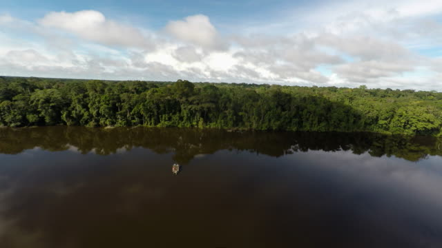aerial forward and back over amazon rainforest, river & boat - amazonas state brazil stock videos and b-roll footage