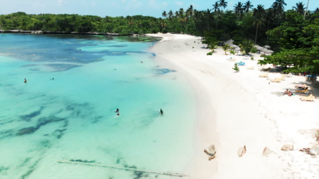 vídeos de stock, filmes e b-roll de aerial forward: beautiful tropical beach with crystal clear water - cadeira de praia