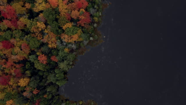 aerial forward: brightly colored forest by dark blue lake - dixville notch, new hampshire - north stock videos & royalty-free footage