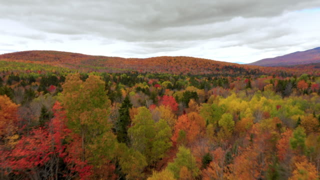 aerial forward: brightly colored, tree covered plain with cloudy sky above - dixville notch, new hampshire - region new england stock-videos und b-roll-filmmaterial