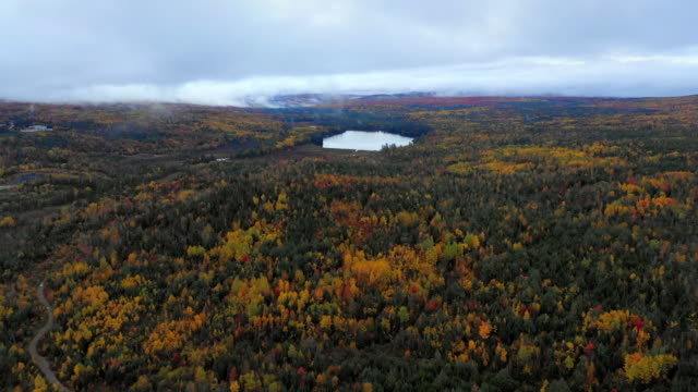aerial forward: colorful forest covered plain with lake in middle and fog in distance - dixville notch, new hampshire - region new england stock-videos und b-roll-filmmaterial