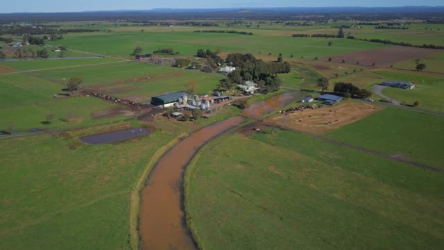 aerial forward: diary farm and lush green fields, eastern australia, australia - diary stock videos & royalty-free footage