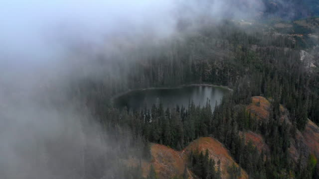 aerial forward: fog floating over small lake surrounded by tall forest - snoqualmie, washington - umgeben stock-videos und b-roll-filmmaterial