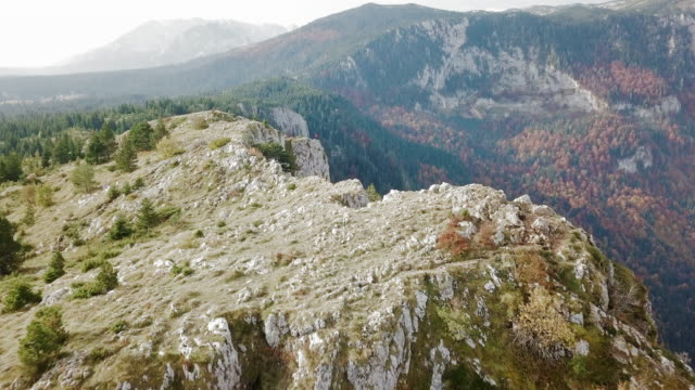 aerial forward: man standing on a cliff of tara canyon in montenegro - montenegro stock videos & royalty-free footage