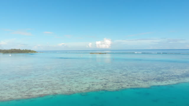 aerial forward: marble blue ocean out to horizon with blue sky above in moorea, french polynesia - moorea stock videos & royalty-free footage