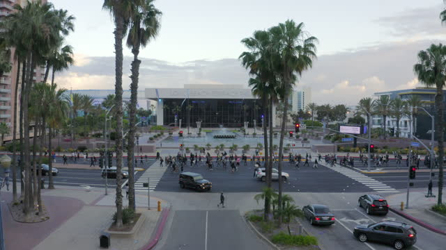 aerial forward: steady stream of protesters march down street in front of theater at dusk under palm trees - long beach, california - long beach california stock videos & royalty-free footage