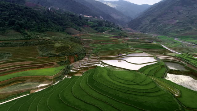 aerial forward tilt up: rice terraces showing the reflection of the sky - vietnam video stock e b–roll