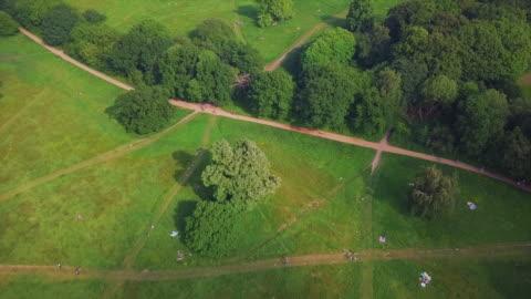 aerial forward tilt upward: peaceful park in london - natural parkland stock videos & royalty-free footage