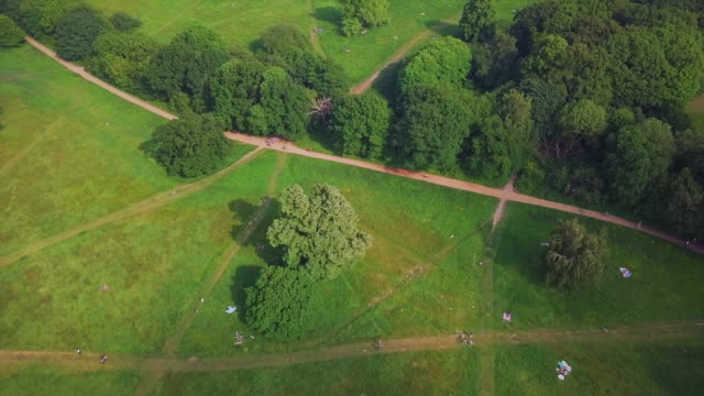 aerial forward tilt upward: peaceful park in london - natural parkland stock videos & royalty-free footage