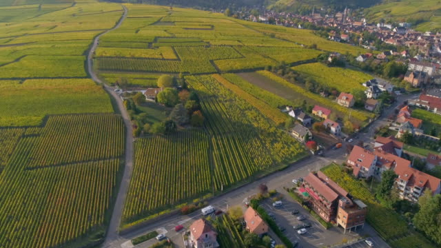 stockvideo's en b-roll-footage met aerial forward tilt-down: camper travelling in riquewihr france with the sun touching the area - overige