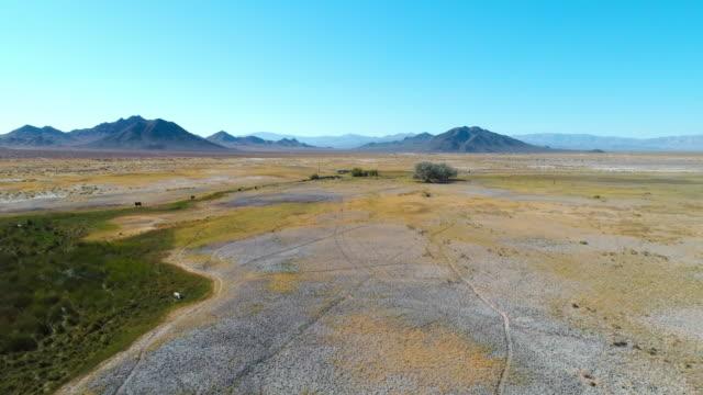 aerial forward: vast area of the unique black rock desert in usa - 囲む点の映像素材/bロール