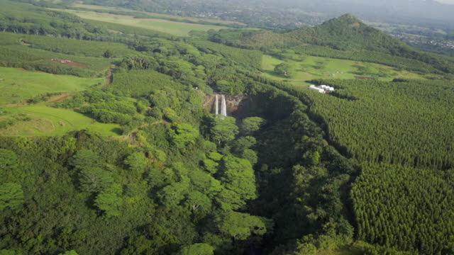 aerial forward: waterfall in green, forest covered, sunny plain, kauai, hawaii - カウアイ点の映像素材/bロール