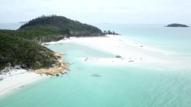 aerial forward/pan down: crowd in light blue ocean relaxing on sandy island, whitsunday islands, australia - tourism stock videos & royalty-free footage