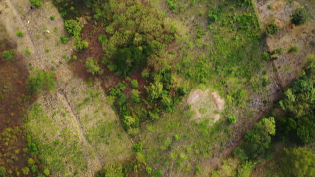 vidéos et rushes de aerial forward/pan up: green valley, hill by gray ocean and white sky  - ometepe, nicaragua - nicaragua