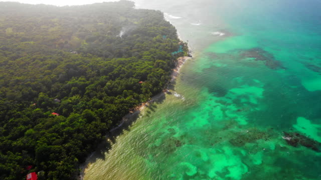 aerial forward/spin left: forest covered island by vibrant blue ocean - little corn island, nicaragua - nicaragua stock videos & royalty-free footage