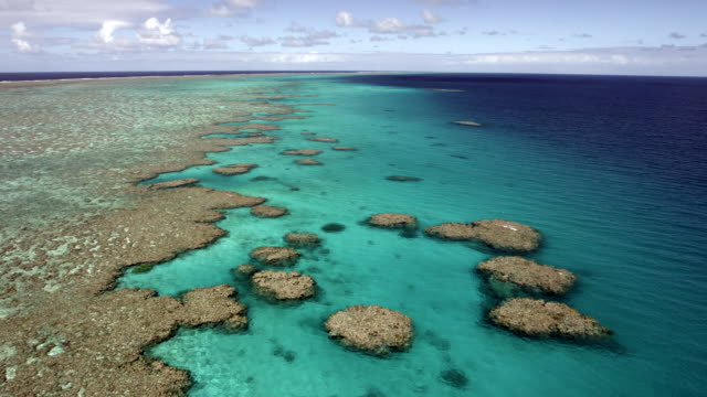 aerial from helicopter of coral reef - reef stock videos & royalty-free footage