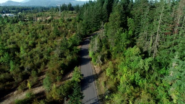 aerial glide road cars forest estate area domestica oregon - oregon stato usa video stock e b–roll