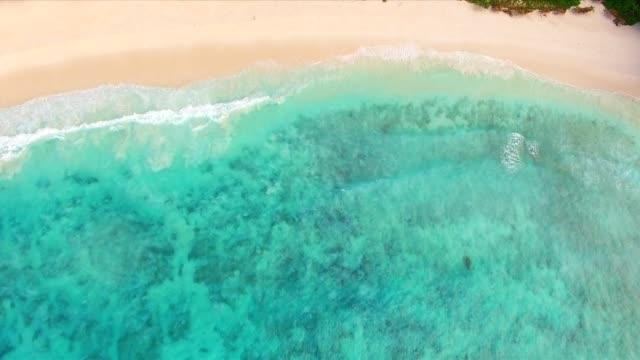 vídeos y material grabado en eventos de stock de antena: grand anse, la isla de la digue, seychelles - seychelles