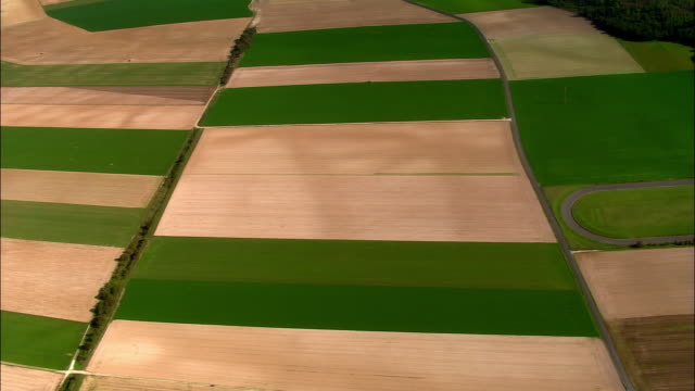 vidéos et rushes de aerial ws green and beige fields/ champagne region, france - patchwork landscape
