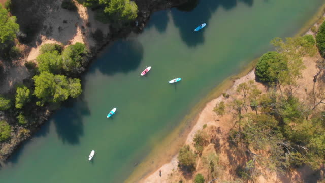 aerial - group of women practicing paddle surf in a beautiful river - cádiz stock videos and b-roll footage