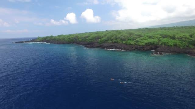 aerial: hawaii ocean with forest and rock covered shore - ハワイ諸島点の映像素材/bロール