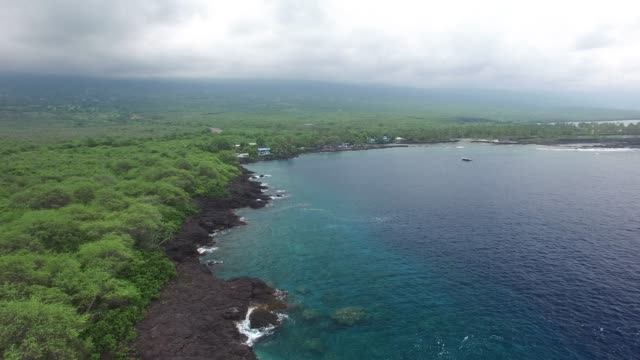 aerial: hawaii ocean with forest and rock covered shore with valley - clear sky stock videos & royalty-free footage