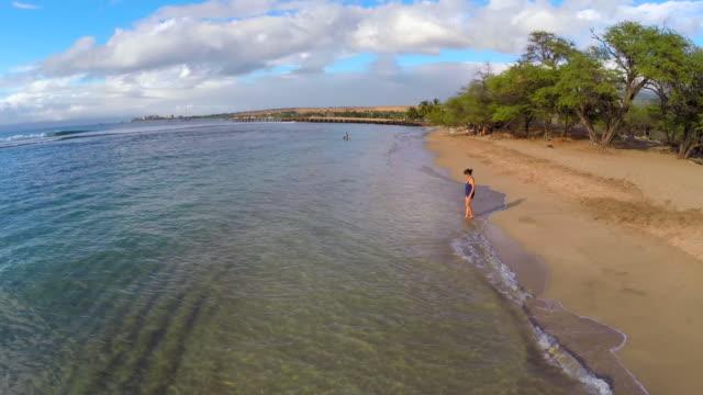 aerial hawaiian beach in maui, hi - maui stock videos & royalty-free footage
