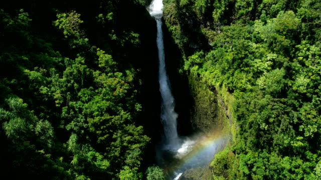 aerial hawaiian view rainforest and valley waterfalls maui - 谷点の映像素材/bロール