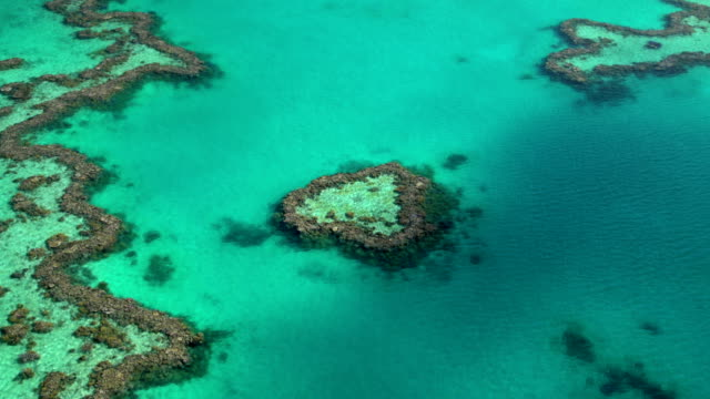 aerial heart island great barrier reef pacific ocean - south pacific ocean stock videos and b-roll footage