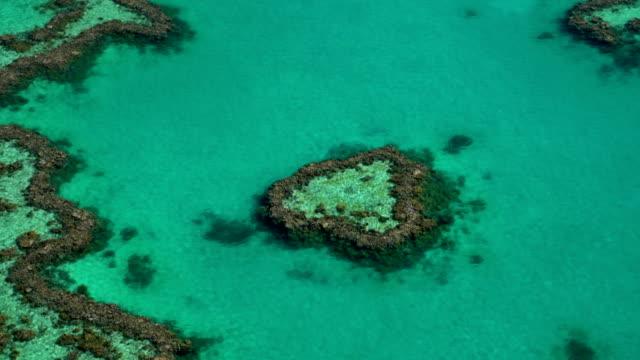 aerial heart island great barrier reef pacific ocean - south pacific ocean点の映像素材/bロール