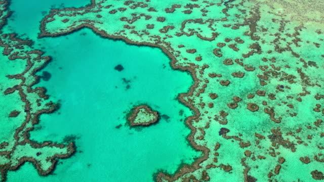 aerial heart island great barrier reef pacific ocean - south pacific ocean stock videos & royalty-free footage