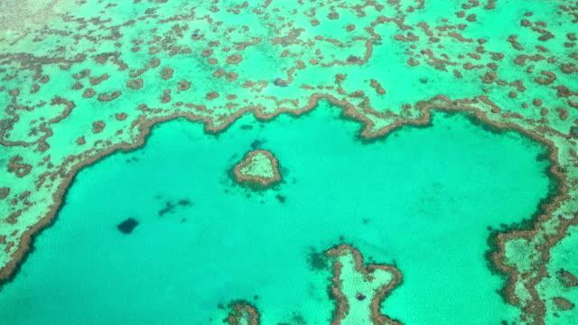aerial heart island great barrier reef pacific ocean - great barrier reef stock videos & royalty-free footage
