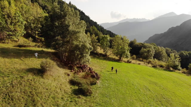 Aerial, herding goats in Spain mountains