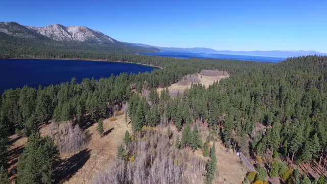 Aerial High Flyover: Meadow, Aspen Trees, Fallen Leaf Lake