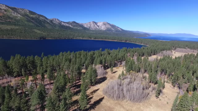 Aerial High Pan: Meadow, Aspen Trees, Fallen Leaf Lake