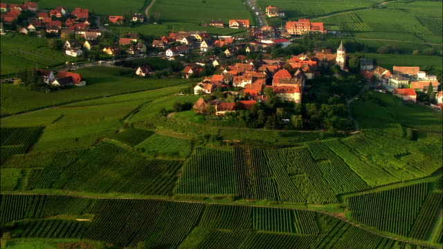 aerial ws zi hilltop village among green terraced fields / riquewihr, alsace, france - remote location stock videos & royalty-free footage