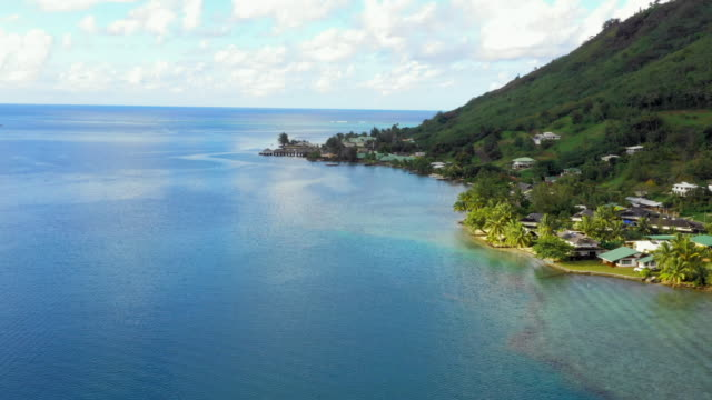 aerial: houses along a tropical coast , moorea, french polynesia - insel moorea stock-videos und b-roll-filmmaterial
