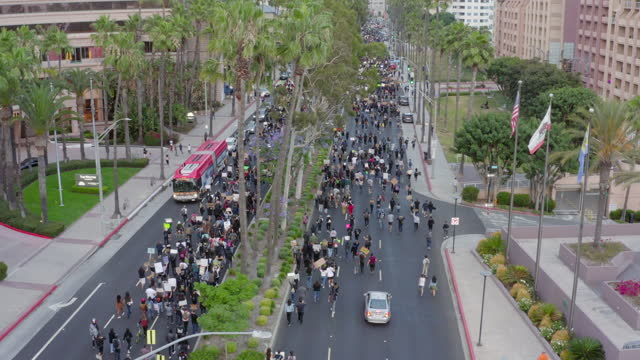 aerial: huge crowd of protesters with signs stream down major city street under palm trees - long beach, california - long beach california stock videos & royalty-free footage