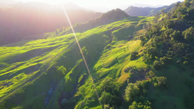 aerial: idyllic green landscape against sky during sunset, scenic view of mountains and trees - napa valley, california - napa california video stock e b–roll