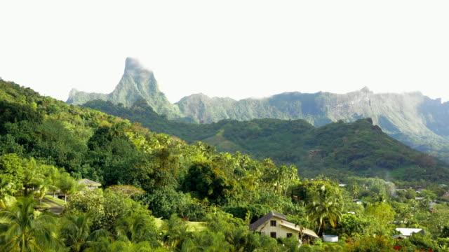 vidéos et rushes de aerial: jungle and mountains on moorea, moorea, french polynesia - moorea