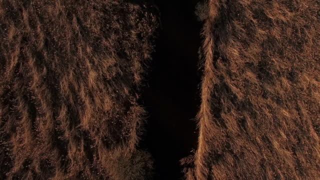 航空写真: 湖「ワギンガー参照してください」、春先に、バイエルン州 - ベルヒテスガーデナーランド点の映像素材/bロール