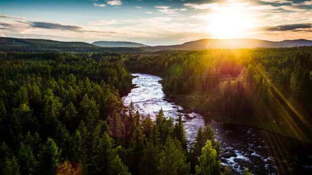 aerial lanscape with river and boreal forest in sweden - scandinavia - svezia video stock e b–roll